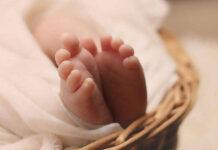 الولادة المبكرة
