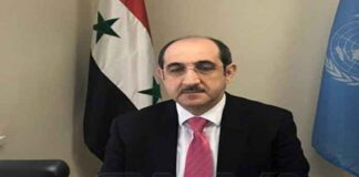 منظمة الحظر سورية