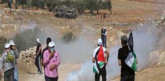 مظاهرات الضفة الغربية