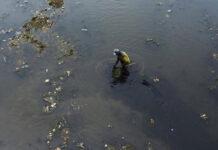 قرص لتنقية المياه الملوثة